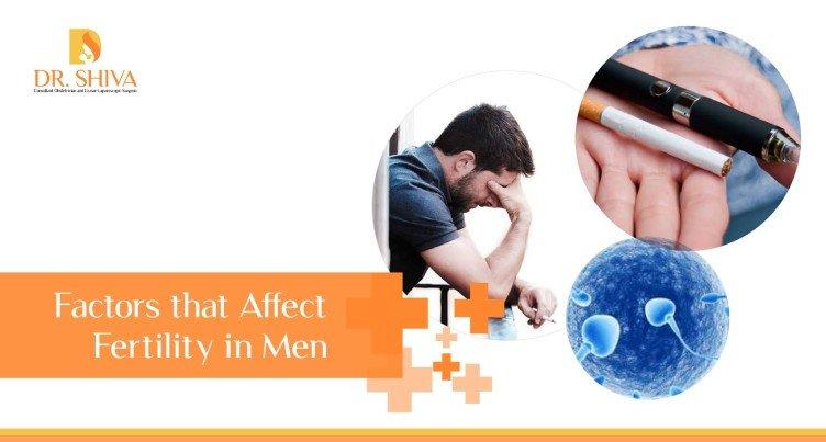 Factors Affecting Male Fertility